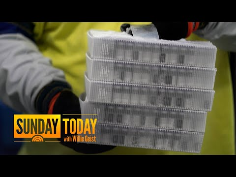 Can Employers Force Workers To Get The Coronavirus Vaccine?   Sunday TODAY