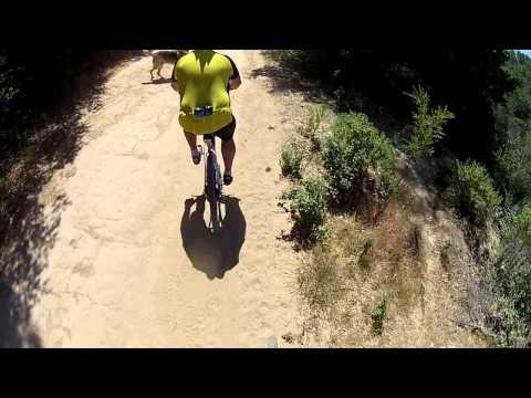 West Ridge Trail, Redwood Regional Park, Oakland CA.