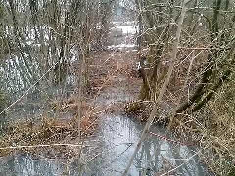 Течёт канализация всем наплевать город Буй, Костромской области
