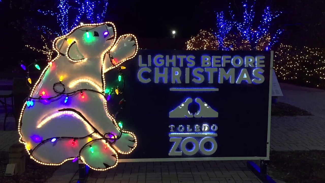 motion christmas lights the lights before christmas toledo zoo - Toledo Zoo Lights Before Christmas