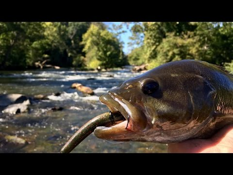 Exploring CREEKS And Fishing For Smallies!