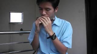 Phó Thác - Harmonica
