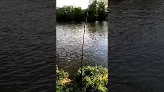 Ловля сома весной Рыбалка в мае на сома