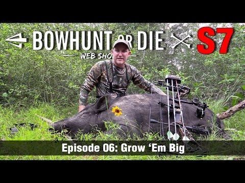 Bowhunt or Die Season 07 Episode 06: Grow 'Em Big