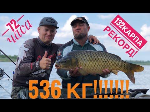 Рекорд!!!!! 536 кг КАРПА за 72 часа! (13+)