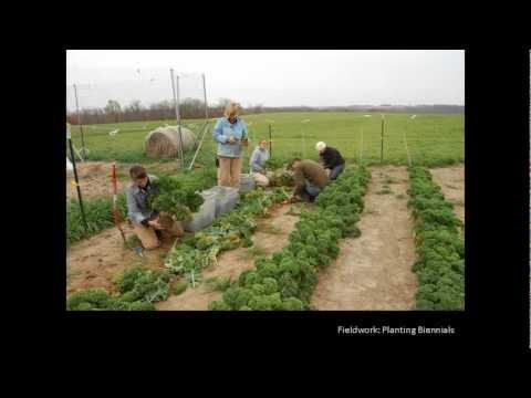 Webinar: Intro to Seed Savers Exchange...