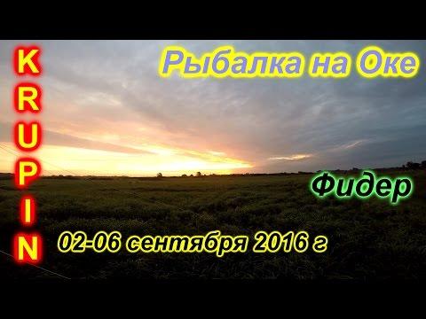 Рыбалка на Оке. Сентябрь 2016 г. Осеннее турне с друзьями