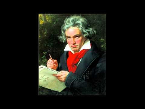 Sinfonie Nr.2 in D-Dur op.36    Symphony No.2 - I. Adagio molto, Allegro con brio - L.v.Beethoven