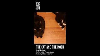 Anjana Vasan reads The Cat and the Moon by W. B. Yeats | Readings from the Rose