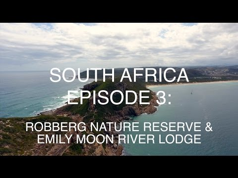 South Africa Episode 3: Robberg Nature Reserve & Emily Moon River Lodge in Plettenberg Bay