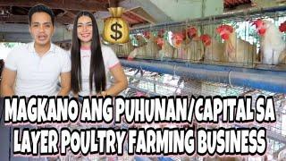 MAGKANO ANG PUHUNAN/BUSINESS CAPITAL NG LAYER POULTRY FARMING SA PILIPINAS | DWIGHT