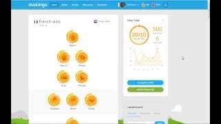 Five-Hundredth Day in Duolingo