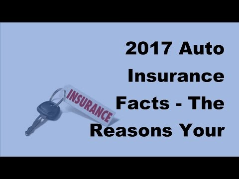 2017 Auto Insurance Facts  | The Reasons Your Insurance Policy Can Be Canceled