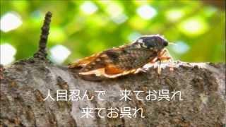 三波春夫さんの「船方さんよ」を歌ってみました。