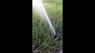 irrigation sprinklers rotors spraying water in nashville brentwood franklin spring hill tn