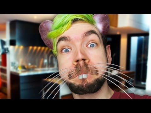 SPREAD THE PLAGUE | Rat Simulator