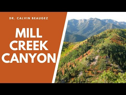 Mill Creek Canyon 15 Minutes from Salt Lake City, Utah,  hiking, biking, ski, Picnic