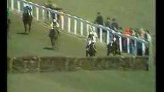Alan Partridge - Horse racing commentary.