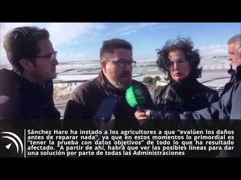 Visita a las zonas de invernaderos afectadas por el tornado en Almería y apoyo a los agricultores.