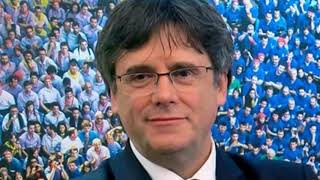 Yo te creo CARLES PUIGDEMONT 🤣🤣 Vuelve a ESPAÑA a recoger el ACTA de EURODIPUTADO 😂😂😂