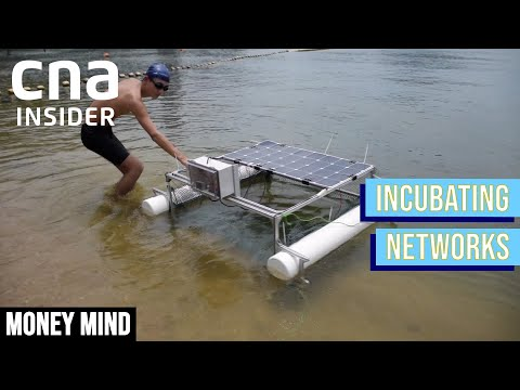 The Eco-Entrepreneurs Waging War On Ocean Plastic Pollution | Money Mind | Incubating Networks