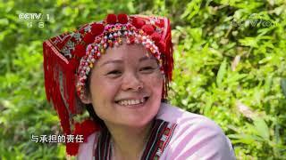 《中华民族》 20191224 南岭云水间 下集| CCTV