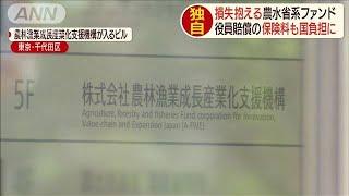 役員賠償の保険料まで国負担 農水ファンド巨額損失(19/06/15)