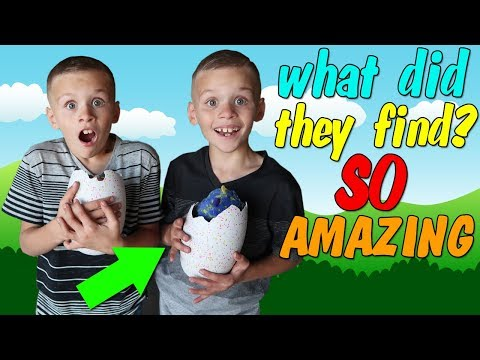 Twins Backyard Surprise Toy Hunt Adventure
