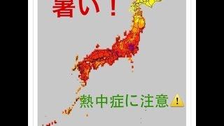 関東甲信や東海を中心に猛烈な暑さに 熱中症に警戒必要