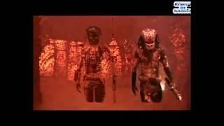 Хищник: Самые зрелищные фрагменты фильмов Хищник, Хищник 2, Чужой против хищника