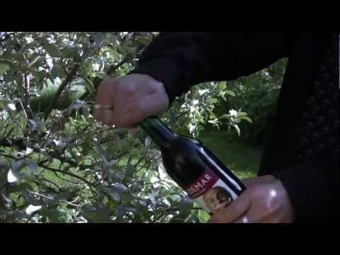 Finnish Wine