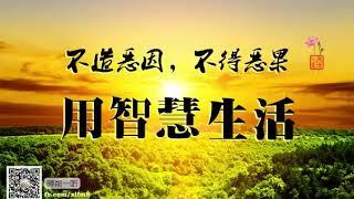 卢台长【白话佛法】✨不造恶因,不得恶果,用智慧生活