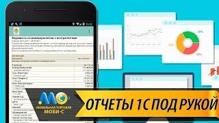 Работа с отчетами : Мобильная торговля Моби-С