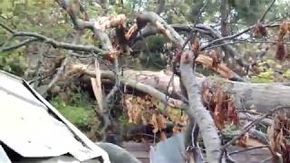 Storm Damage House Rear