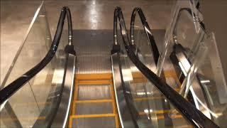 蔦屋家電のエスカレーター(東芝製)2F~6F Tsutaya kaden escalator, Hiroshima(TOSHIBA) thumbnail