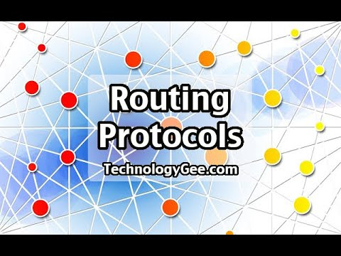 Routing & Switching: Routing Protocols | CompTIA Network+ N10-007 | 1.3c