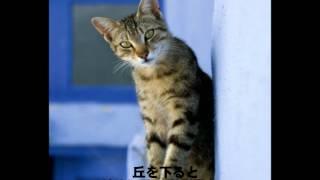 山口県で活動している姉妹ユニットSella(セラ)の 荒瀬朋子が作詞・作曲...