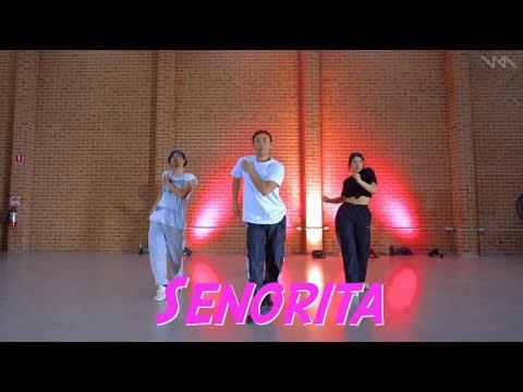 Shawn Mendes, Camila Cabello - Señorita Beginner Dance Class