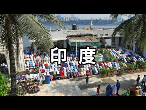 🇮🇳 India Travel Vlog Part 2 - Willy Lee