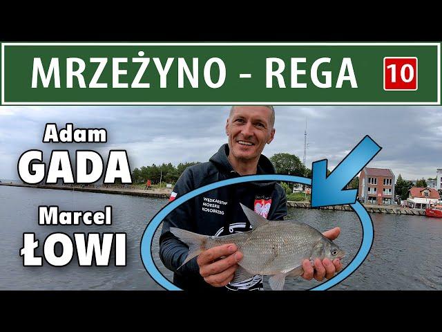 MRZEŻYNO ➤ Ujście rzeki REGA (opis łowiska)
