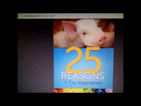 25 Reasons to Go Vegetarian - Vegan (Health Climate Action Anmials Food Waste Fish Cancer Heart MFA