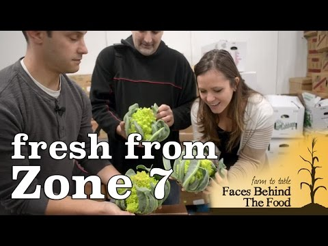 ZONE 7 NJ Food Distributor  - Farm to Table: Faces Behind The Food | Ep. 1