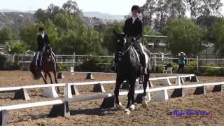 240D Ellie Hunt on Titus JR Novice Rider Dressage Copper Meadows March 2014