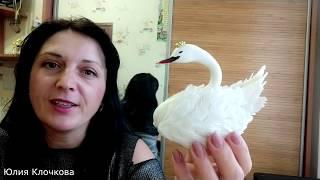 как сделать лебедей из мастики мастер класс