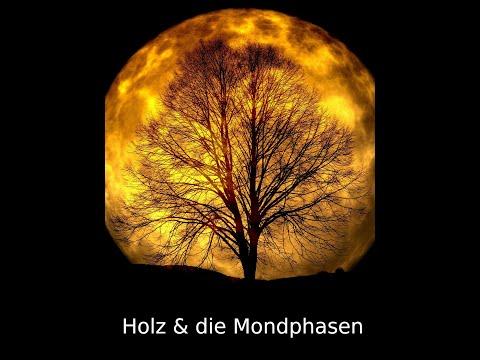 Holz und die Mondphasen