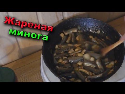 ЖАРЕНАЯ МИНОГА | Дальневосточный деликатес | Lamprey fish river monsters