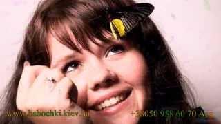 Бабочка Птицекрылка - оригинальный подарок для мужчин, женщин, детей www.babochki.kiev.ua