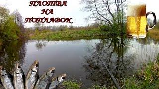 Ловля плотвы на поплавок