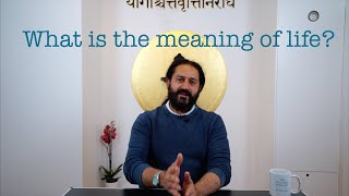 What is the meaning of Life? The Yogveda Podcast with Shahid Khan.