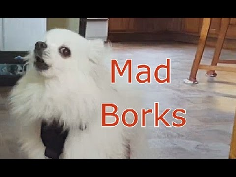 Mad borks